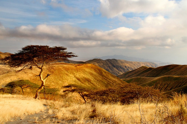 landscape-of-tanzania-northern-rift.jpg